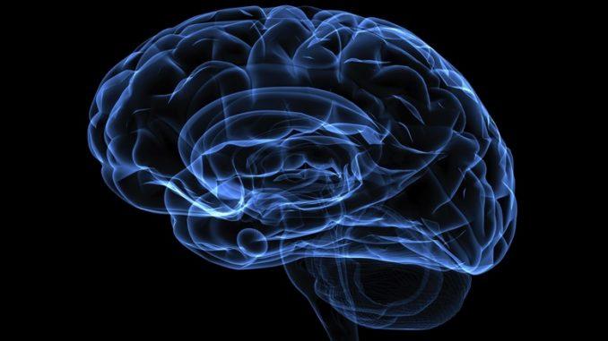 5 τρόποι για να «φρενάρεις» τη γήρανση του εγκεφάλου