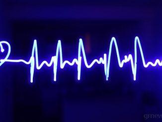 καρδιακός μυς ή καρδιά
